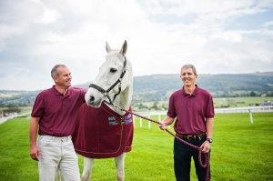 Horse Equine Veterinary Cheltenham