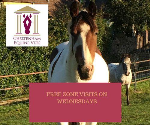 Cheltenham Equine Vets